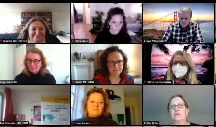 Screenshot of virtual Meeting showing participants