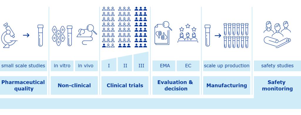 Infographic describing vaccine development process